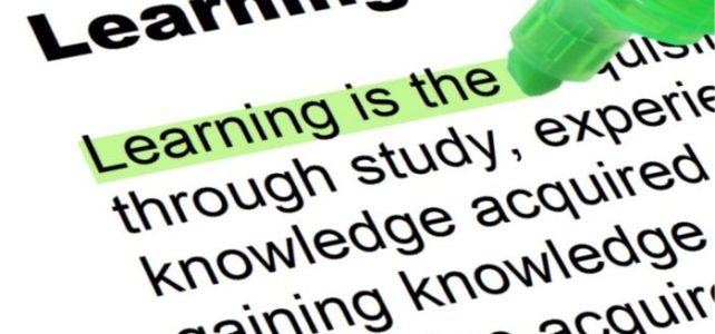 Millainen uusien tapojen oppija juuri sinä olet?
